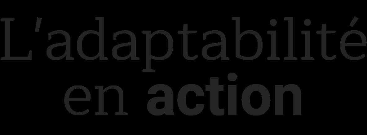 L'adaptabilité en action